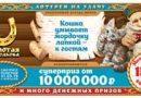 Проверить билет 187 тиража Золотой подковы — результаты за 31.03.2019